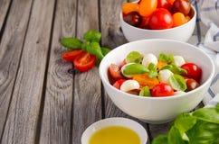 意大利人Caprese沙拉用西红柿、小无盐干酪和新鲜的蓬蒿 免版税库存照片