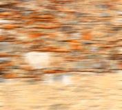 意大利和破裂的步砖在老墙壁构造材料 免版税库存照片