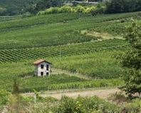 意大利国家边 库存照片