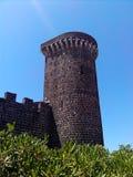 意大利城堡塔风景 免版税库存图片