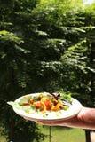 意大利尼奥基用蘑菇和西红柿酱 免版税库存照片