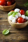 意大利开胃小菜用无盐干酪、蕃茄和蓬蒿 库存图片