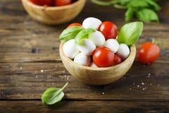 意大利开胃小菜用无盐干酪、蕃茄和蓬蒿 免版税库存图片