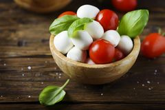 意大利开胃小菜用无盐干酪、蕃茄和蓬蒿 免版税图库摄影