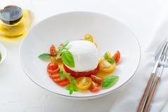意大利开胃菜caprese沙拉用成熟红色和黄色西红柿、mozarella、新鲜的蓬蒿叶子和橄榄油 免版税库存图片