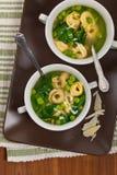 意大利式饺子汤用菠菜 图库摄影