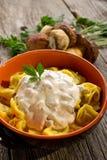 意大利式饺子用奶油沙司 库存图片
