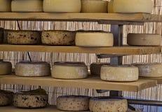意大利手工制造乳酪 库存图片