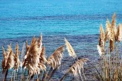 意大利撒丁岛海运 免版税库存照片