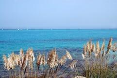 意大利撒丁岛海运 图库摄影