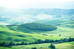 意大利横向托斯卡纳 免版税图库摄影