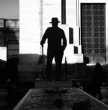意大利歌手卢西奥・达拉坟茔位于`园地Carducci `,重要个性是被埋没的i Certosa的区域  免版税库存照片