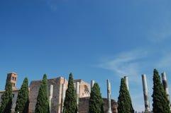 意大利毛皮围巾的罗马罗马废墟 图库摄影