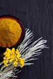 意大利永恒,蜡菊属植物italicum,咖喱植物 免版税库存照片