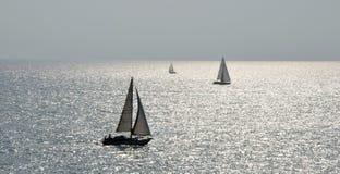 意大利海和帆船 库存图片