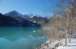 意大利湖边雪结构树 免版税库存图片