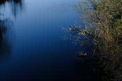 意大利湖风景在春天 库存照片