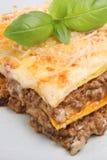 意大利烤宽面条膳食 库存照片