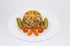 意大利煨饭用肉和蔬菜 免版税图库摄影