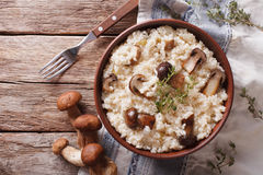 意大利煨饭用porcini蘑菇和麝香草特写镜头 水平 免版税库存图片