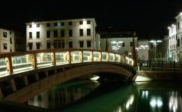 意大利特雷维索大学 库存图片