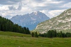 意大利白云岩的山风景 库存图片