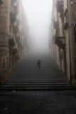 意大利西西里岛卡尔塔吉龙-城市的主要地标是142步巨大的Scalinata二圣玛丽亚del Monte 免版税库存照片