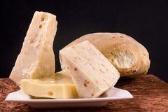 意大利语的干酪 库存照片