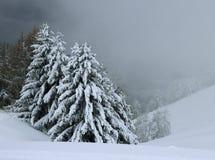 意大利阿尔卑斯在冬天 库存图片