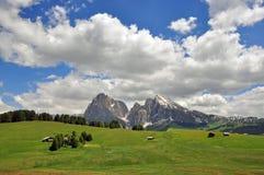意大利阿尔卑斯在夏天 免版税库存图片