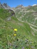 意大利阿尔卑斯; Val d'Olen 库存照片