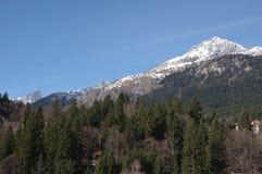 意大利阿尔卑斯andalo雪冬天2 库存照片