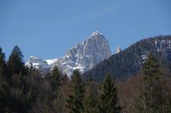 意大利阿尔卑斯andalo雪冬天4 库存照片