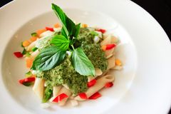 意大利面食用菠菜奶油沙司 免版税图库摄影