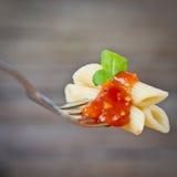 意大利面食用西红柿酱 免版税库存图片
