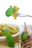 意大利面食pesto 库存图片