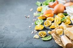 意大利食物和成份、手工制造意大利式饺子用菠菜和乳清干酪 免版税库存照片