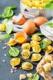 意大利食物和成份、手工制造意大利式饺子用菠菜和乳清干酪 库存照片
