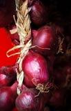 意大利,区域卡拉布里亚,红洋葱Tropea (Cipolla rossa) 库存照片