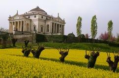 意大利,威岑扎,圆形建筑 免版税库存照片