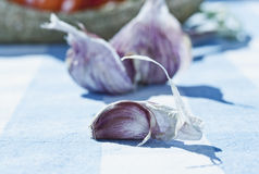 意大利,托斯卡纳, Magliano,关闭在桌上的大蒜 图库摄影