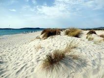 意大利,撒丁岛, Carbonia伊格莱斯,波尔图皮诺,沙丘靠岸 库存图片