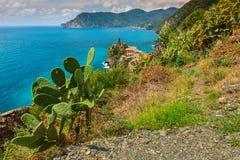 意大利,欧洲的五乡地海岸的韦尔纳扎村庄 库存照片
