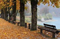 意大利,特伦托自治省:在Ledro湖的秋天颜色 免版税库存照片