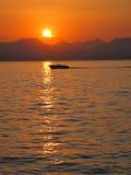 意大利, Lago di garda 库存照片