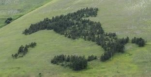 意大利画与树, Castelluccio 免版税库存图片