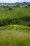 意大利-从小山的田园诗看法 库存图片