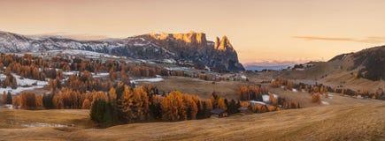 意大利 白云岩 与明亮的颜色、房子和落叶松属树的秋天风景在软的阳光下 免版税图库摄影