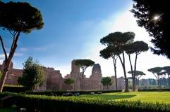 Caracalla春天和树看法有草原的在罗马 免版税图库摄影