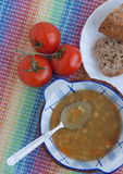 意大利素食扁豆汤 库存照片